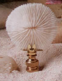 Mushroom Coral Lamp Finial in Seashell Finial