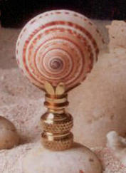 Sun Dial Lamp Finial in Seashell Finial