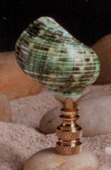 Sea Foam Turbo Lamp Finial in Seashell Finial